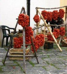 seminte de rosii, maturitate medie, crestere semi-determinata