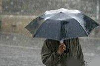 viata sub umbrela