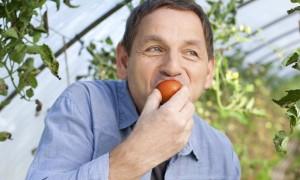 Germany, Saxony, Mature man tasting tomato at the farm