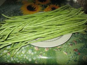 seminte de rosii si alte legume